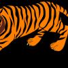 बाघ के बारे में 25 रोचक तथ्य । Tiger In Hindi