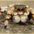 मकड़ी के बारे में 38 रोचक जानकारी । Spider In Hindi