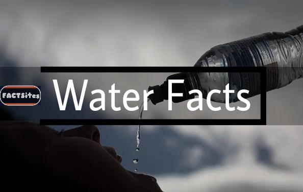 Water (पानी)